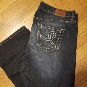 Maurices Bootcut Jean's 18 Reg